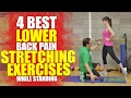 4 Best Lower Back Pain Stretching Exercises while Standing