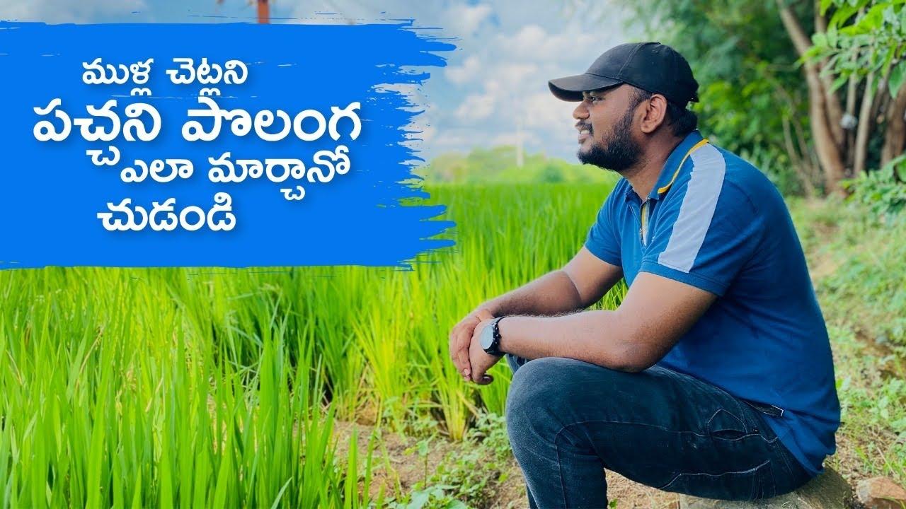ముళ్ల చెట్లని పచ్చని పొలం గ ఎలా మార్చానో చుడండి ....| Farming | Kiran macha | Funpataka