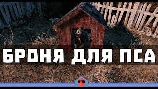Fallout 4 - Где найти броню для пса