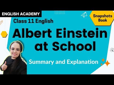 Albert Einstein at School Class 11 English Snapshots book chapter 4 explanation  CBSE NCERT Syllabus