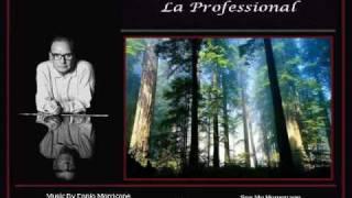 Ennio Morricone - La Professional - pps - By Wilfried Braem