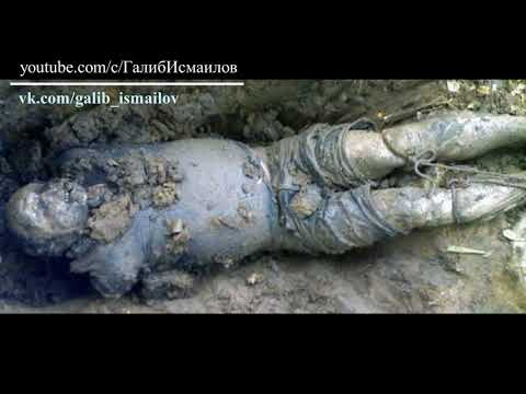А ты знал? Что происходит с телом после смерти?