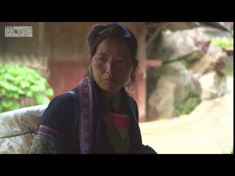 Woman of Black Hmong Tribe