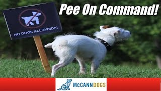 Teach Your Dog To Pee (Or Poop) On Command