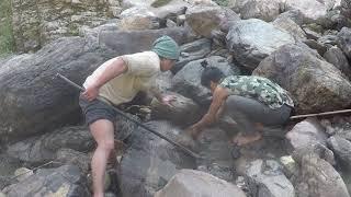 NATURAL FISHING IN NEPAL     STREAM RIVER FISHING     HIMALAYAN TROUT FISHING     DUWALI FISHING