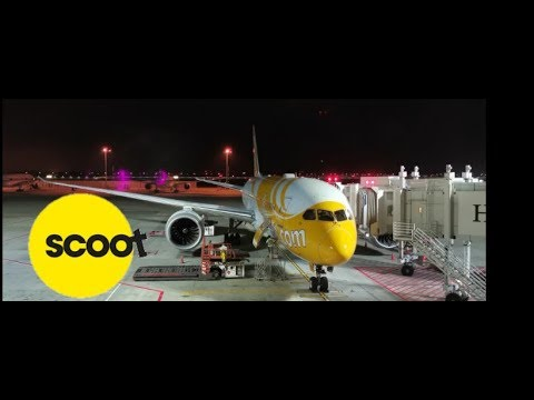 SCOOT Airline Review - Singapore To Sydney  Travel Vlog