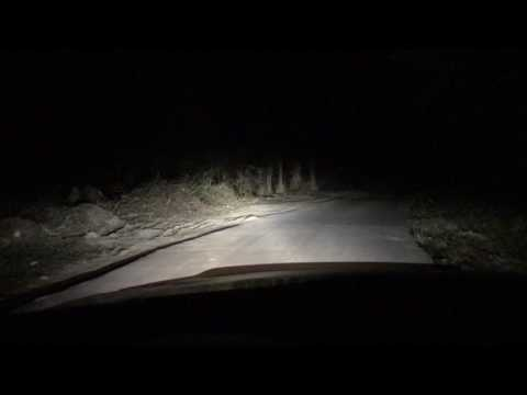 Bi LED Koito 3.0 ПТФ линзы 3.0 биксенон, съемка по ночной дороге и немного мыслей вслух