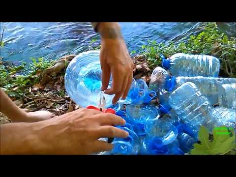 How to make fish traps with plastic bottles for food or making aquaponic systems, learn from nature