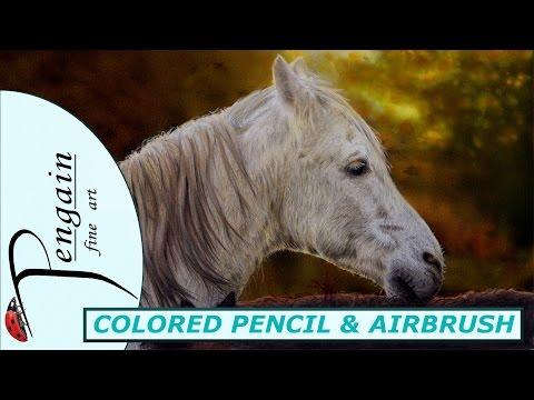 White horse / Schimmel Farbstift-Speedpaint