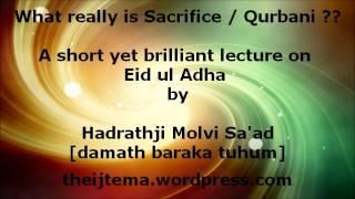 Maulana Saad on Eid ul Adha. Brilliant speech.
