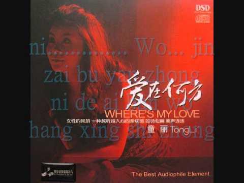 童丽- 我心永恒- Tong Li- My Heart Will Go On (Pinyin Lyrics)