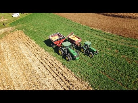 Harvesting and Transporting Corn - Ryan's Place