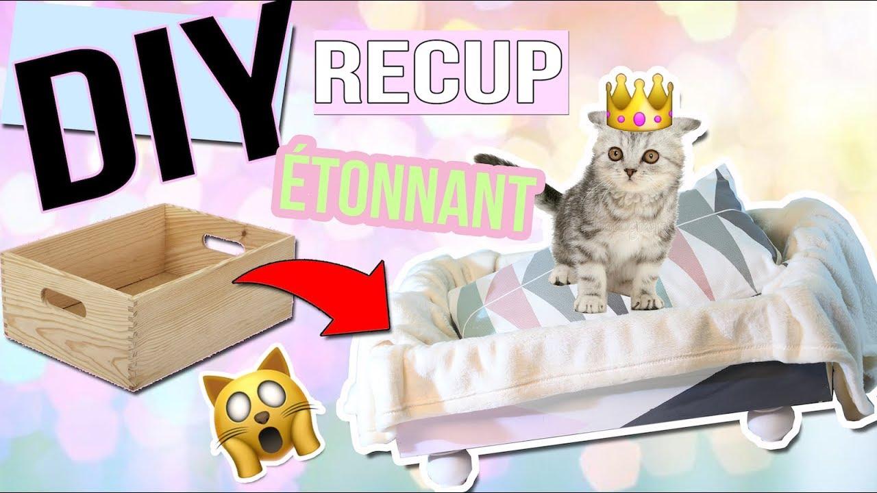 Deco Recup Facile diy deco┋ un lit avec un tiroir !! 🙀 ??? pour chat / chien facile