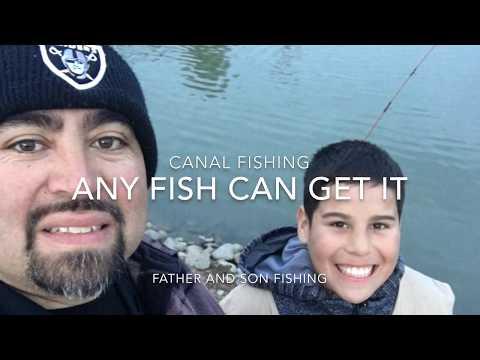 Common Carp Fishing At The California Delta Mendota Canal