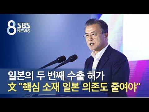 """추가 수출 허가…문재인 대통령 """"핵심 소재 일본 의존도 줄여야"""" / SBS"""