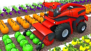 Farm Combine harvester from the field colors vegetables for kids
