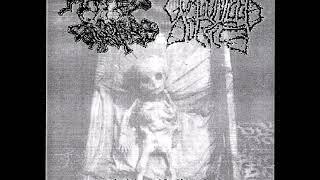 Gorgonized Dorks - Tracks from Hated Principles split ep
