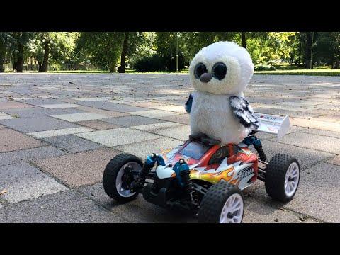 Freaky Owl RC Escape