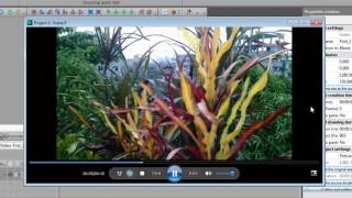 How to add negative effects in my video with VSDC Free Video Editor