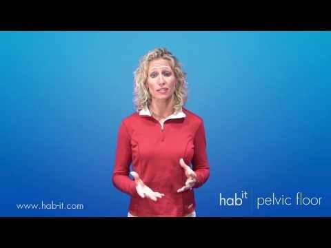 Hab It Pelvic Floor Optimal Posture Review Youtube