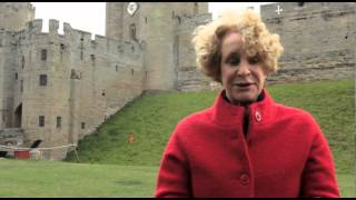 How was Anne Neville's story?