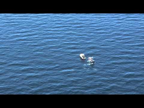 Coast guard responds to sinking fishing boat east of for Manasquan inlet fishing