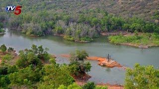 Hudhud Wash Out greenery of Kambalakonda Park at Vizag : TV5 News