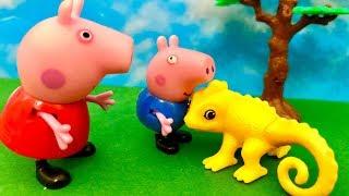 Świnka Peppa  George uważaj, co to jest ☺️ Bajka dla dzieci PO POLSKU