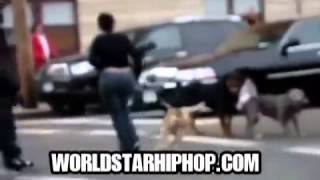 Rottweiler Vicously Attacks Owner's Pitbull! Man Pulls Out His 9mm   Shoots It Up!