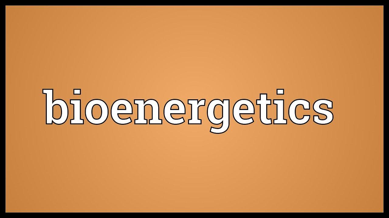 Bioenergetics Meaning - YouTube