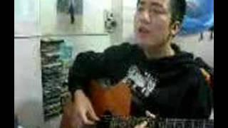 Hinh bong doi cho