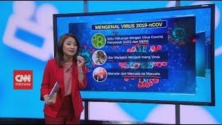 Mengenal Virus Corona
