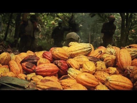 Konye's Cocoa (FRENCH VERSION)