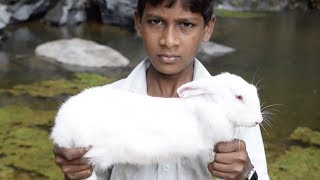 Video Small Boy Caught Rabbit   Rabbit Roast Recipe   Rabbit Roast Recipe in Tamil download MP3, 3GP, MP4, WEBM, AVI, FLV Mei 2018
