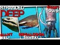 GIANT SQUID, MEGALODON, GIANT EEL - Stranded Deep Alpha 0.35 Gameplay