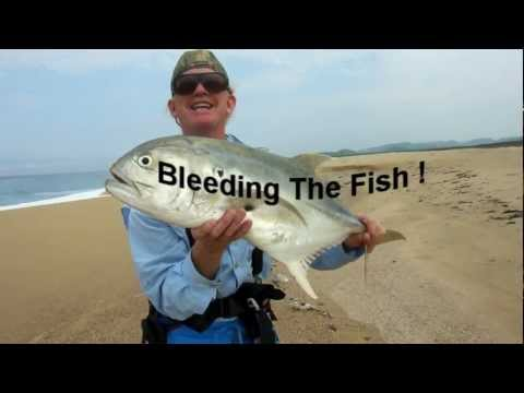 Finger Stabbing A Fish To Bleed It