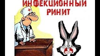 видео Симптомы и методы лечения ринита у кроликов