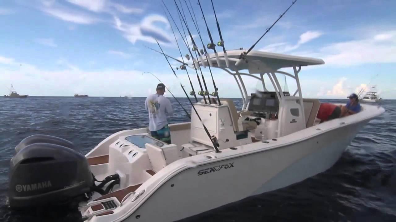 Sea Fox 288 Commander - YouTube