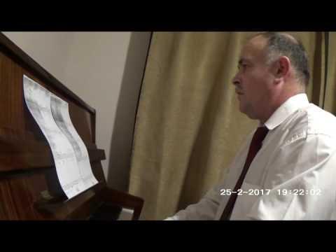 Theme from Godfather II - prof. Adrian Bordeianu