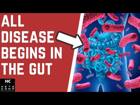 does-leaky-gut-cause-autoimmune-disease?-|-brain-fog-&-medication-|-dr-nick-jensen-&-dr-david-wardy