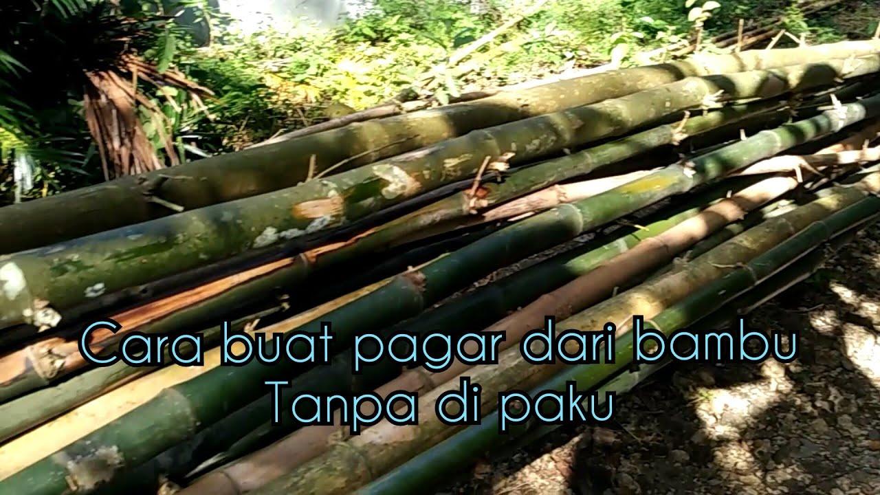 Membuat pagar kandang sapi dari bambu | kegiatanewongndeso ...