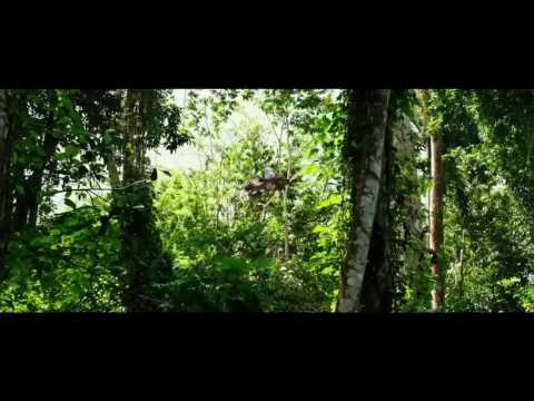 кино три икса 3 мировое господство 2017