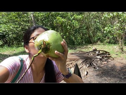 how to prepare a coconut to drink