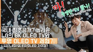rollable oled tv