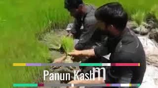 Khudaya raham Somewhere in south Kashmir