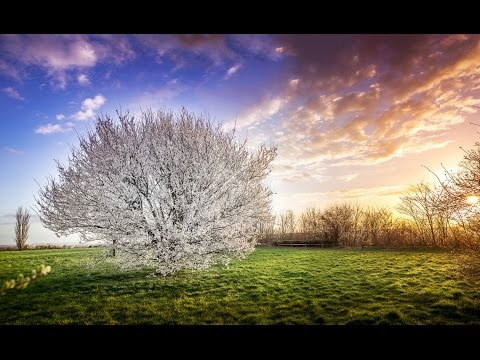 How to Stitch Multiple Exposures using Lightroom and Photoshop - PLP #101 by Serge Ramelli