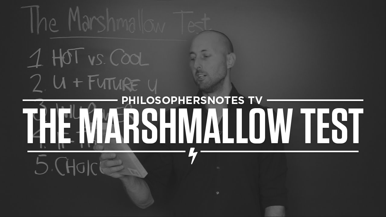 the marshmellow test review Learn about android marshmallow on cnet read the most important product reviews and follow the tech news and more.
