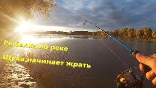Рыбалка на спиннинг река уды Щука начинает жрать
