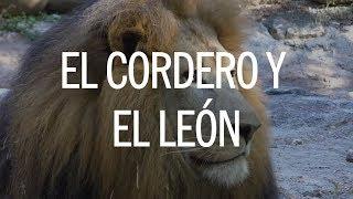 El Cordero Y El León - Twice Ft. Evan Craft