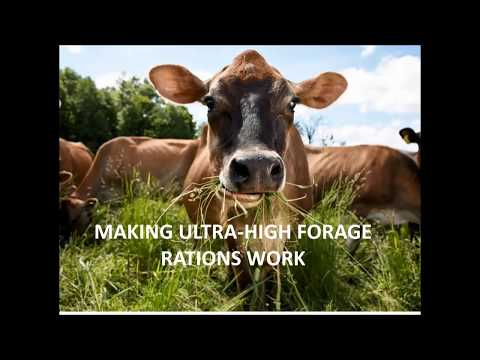 Making Ultra-High Forage Rations Work - Dr. Silvia Abel-Caines